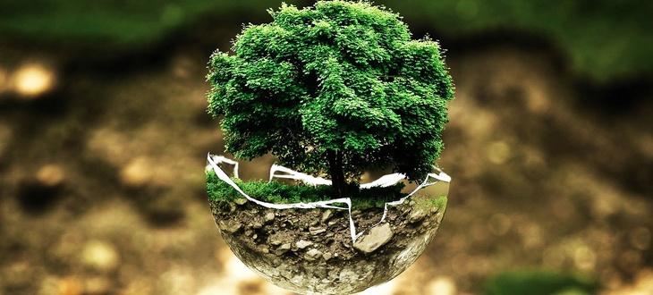 Екологични автомобили в околната среда